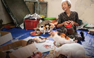 Le Thi Quy - The Cat's Mother