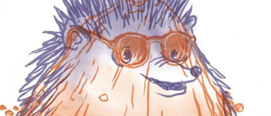 4Hoog stekeblind Het Perron kindervoorstelling