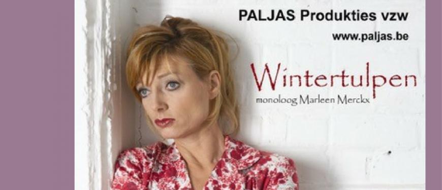 Wintertulpen - Marleen Mercx