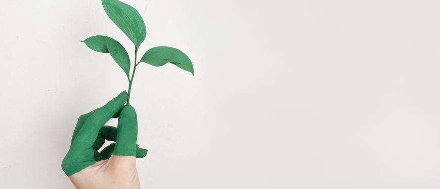 VormingPlus Oostende-Westhoek   Naar 100% hernieuwbare energie? Over de rol van energiecoöperaties