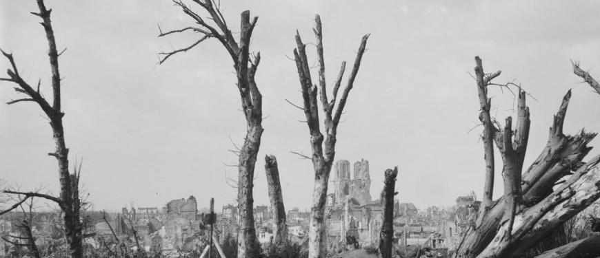 A Symphony of Trees