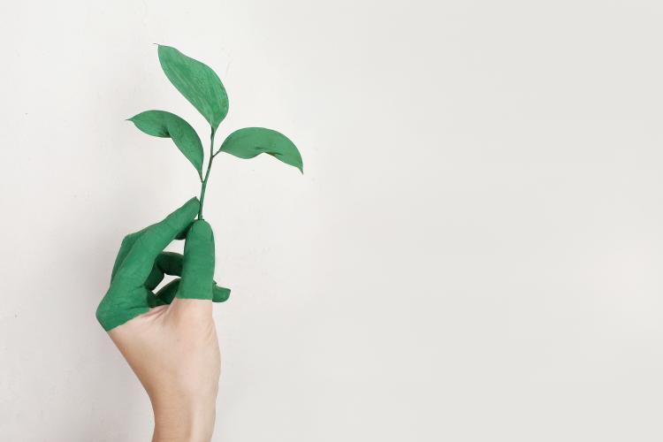 VormingPlus Oostende-Westhoek | Naar 100% hernieuwbare energie? Over de rol van energiecoöperaties