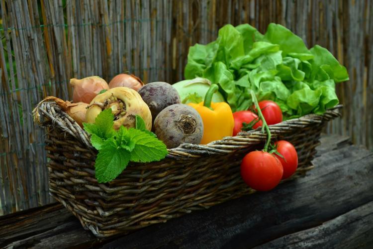 VormingPlus Oostende-Westhoek | Wat (w)eten we? Een duurzaam en gezond voedselverhaal