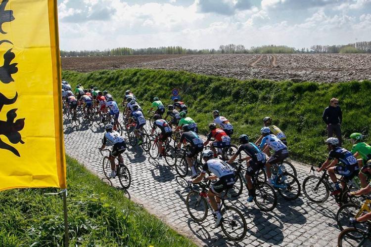 De Ronde van Vlaanderen (Walter van den Broeck)