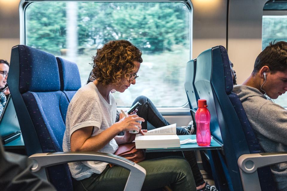 Lezende vrouw in de trein