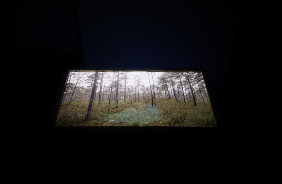 Gorodets: a Museum of Muted Talks - Niko Hafkenscheid & Valentina Stepanova © Niko Hafkenscheid