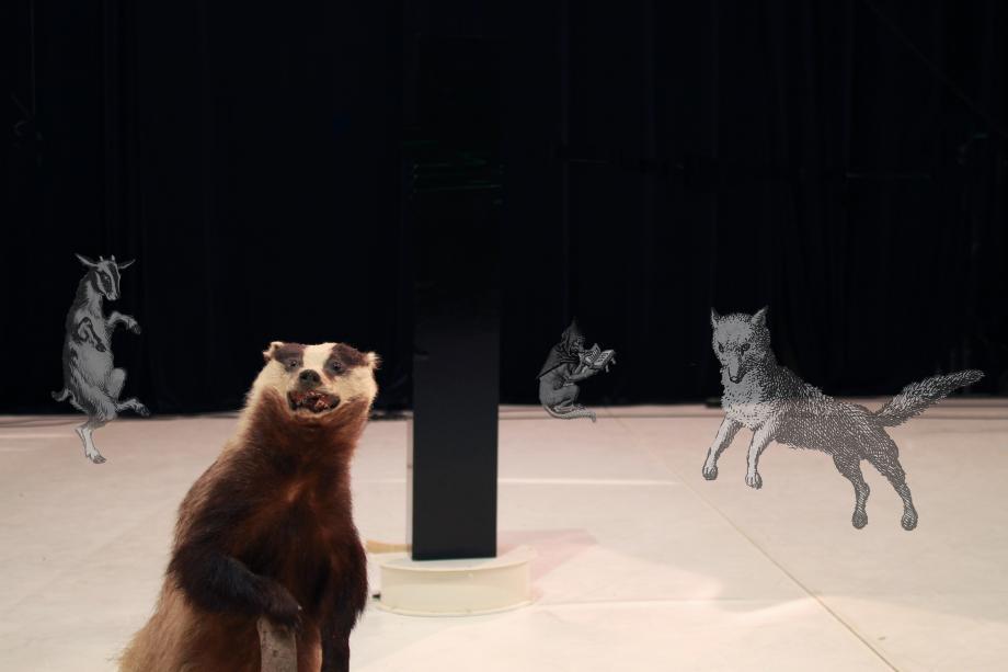 De dieren - L'hommmm - kunstencentrum nona