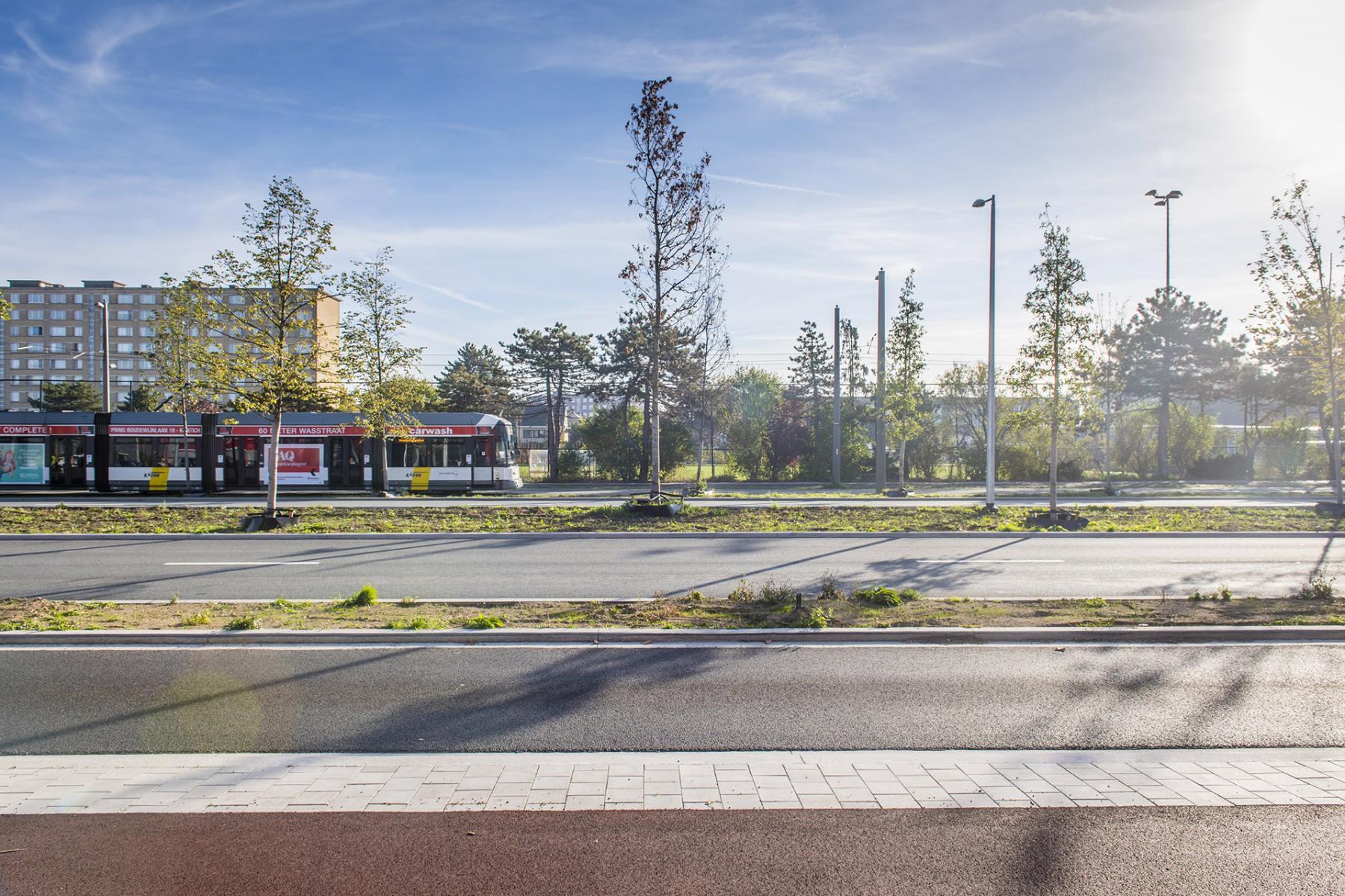 Rijweg met fietspad en trambusbaan