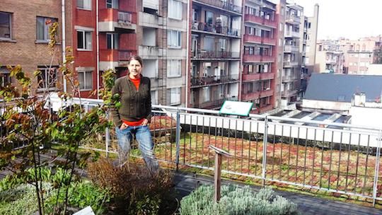 Nora Danko, adviseur bij EchoHuis Antwerpen, droomt weg bij groendaken