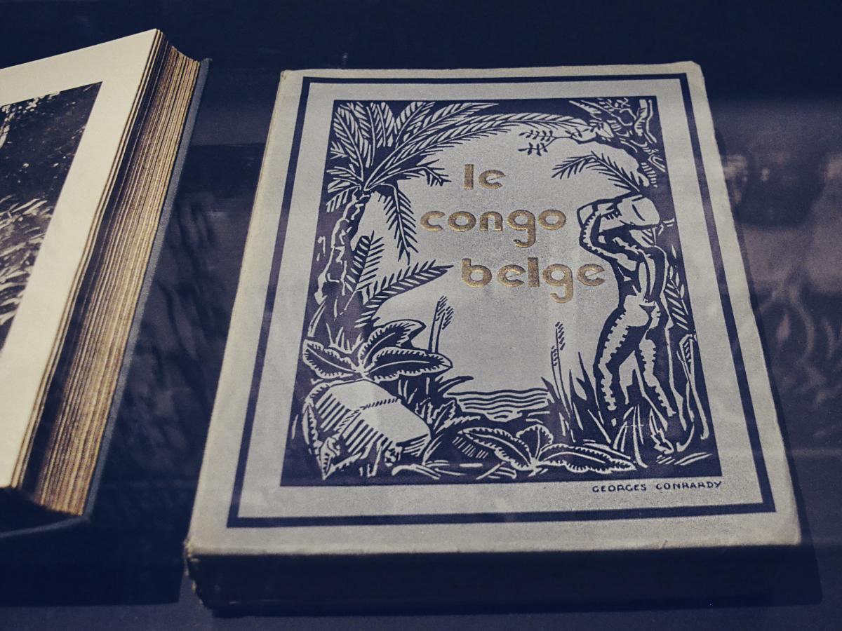 Boek le Congo belge