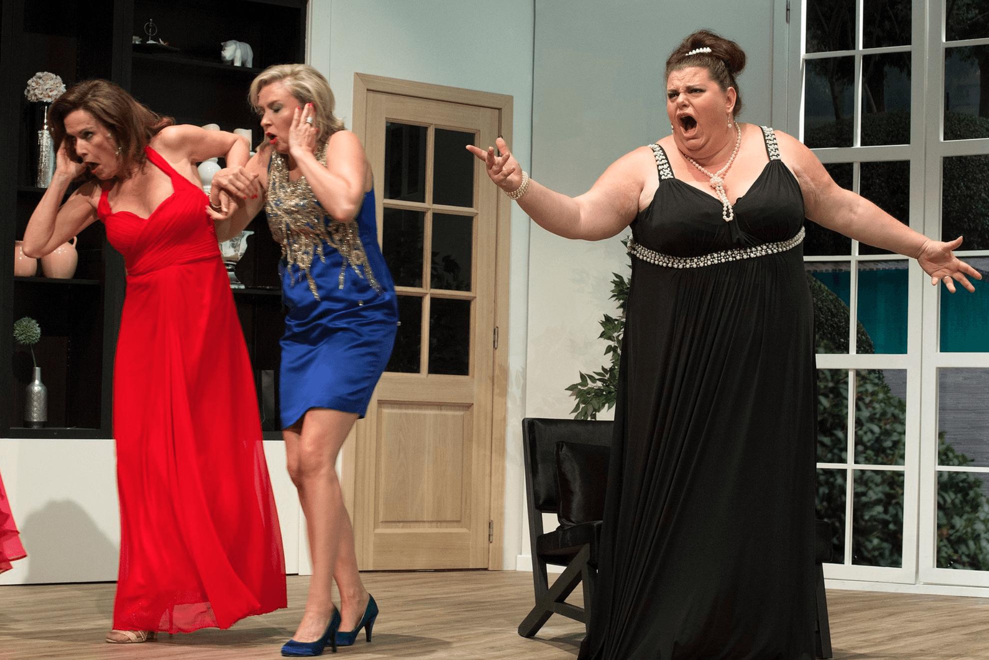 Brasschaatse Huisvrouwen
