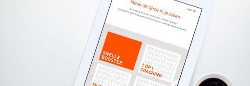 webontwikkeling huisstijl qlick